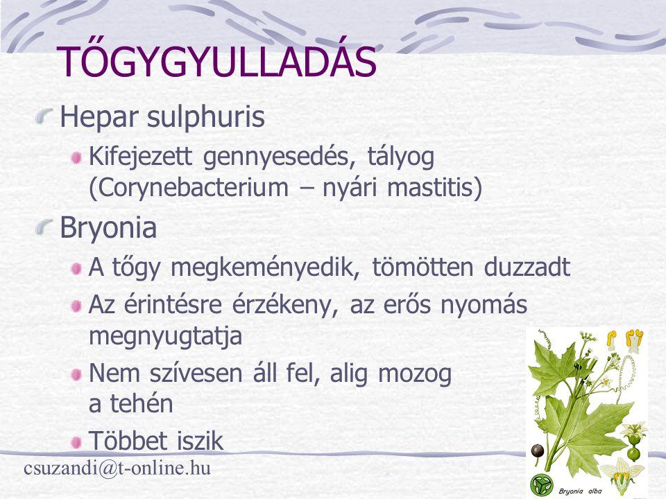 TŐGYGYULLADÁS Hepar sulphuris Bryonia