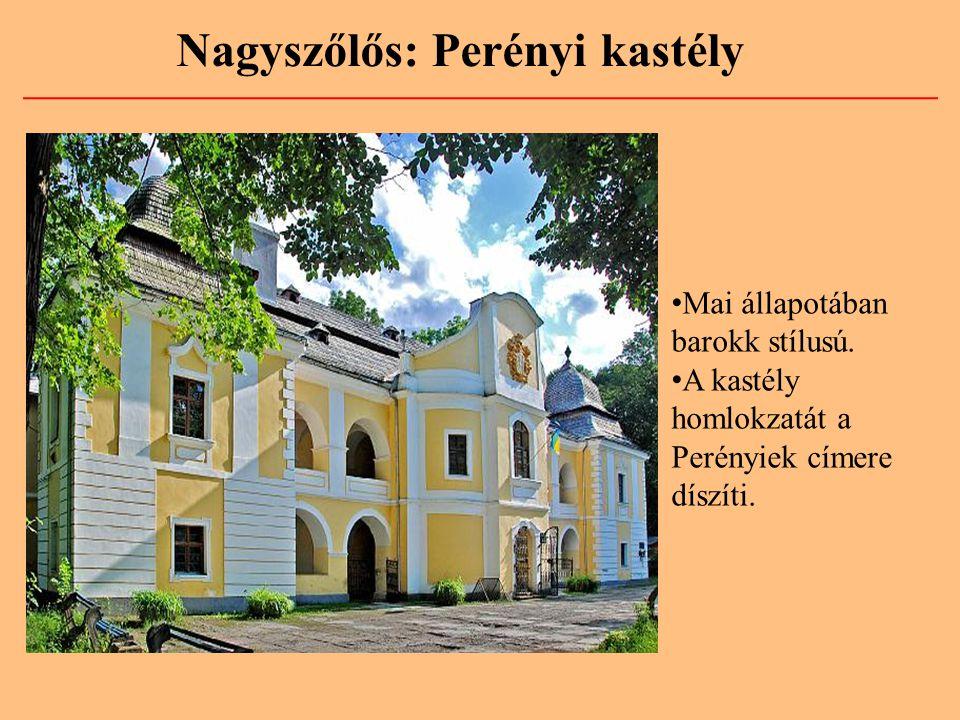 Nagyszőlős: Perényi kastély
