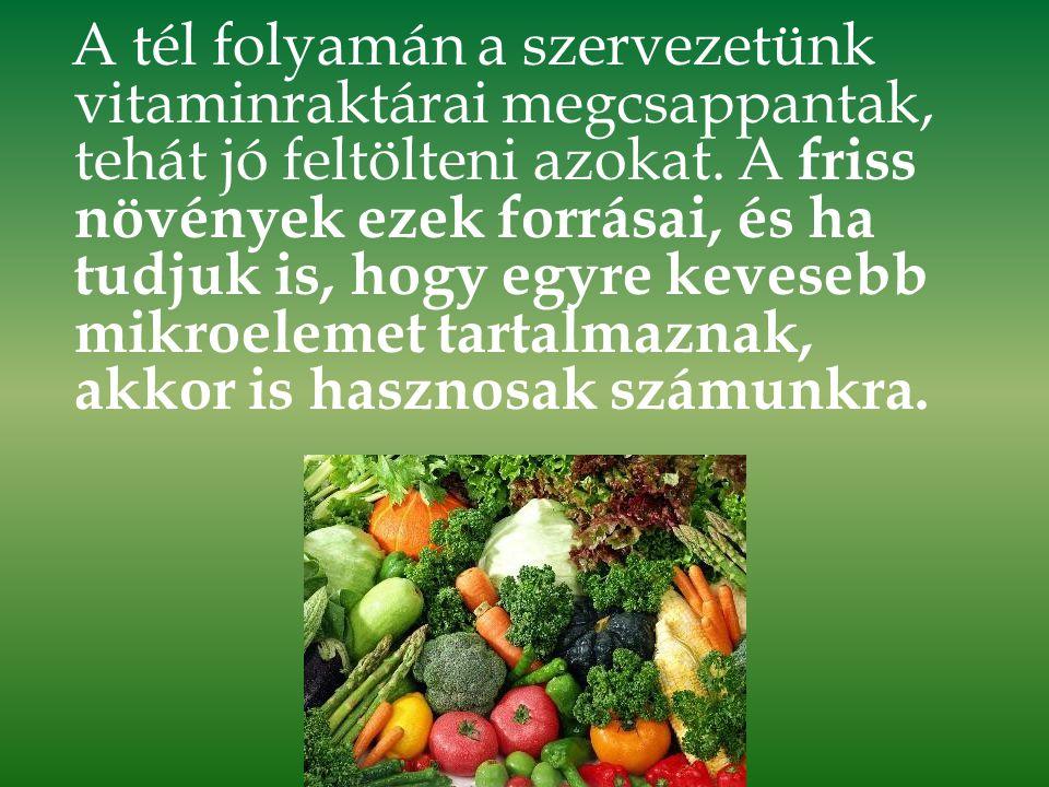 A tél folyamán a szervezetünk vitaminraktárai megcsappantak, tehát jó feltölteni azokat.