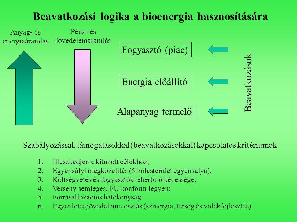 Beavatkozási logika a bioenergia hasznosítására