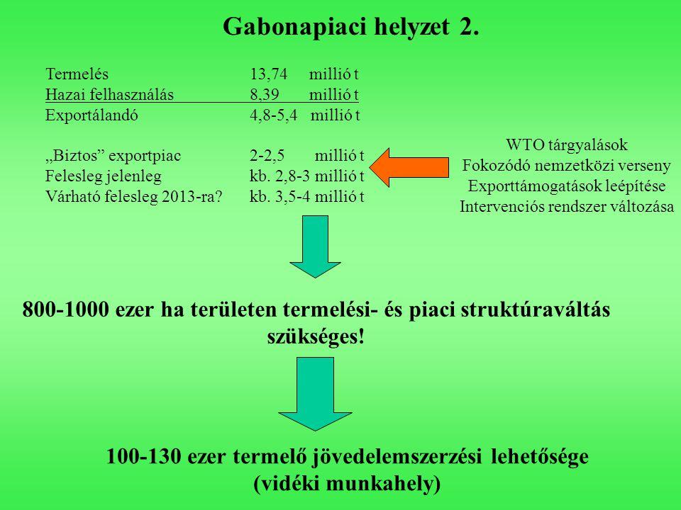 Gabonapiaci helyzet 2. Termelés 13,74 millió t. Hazai felhasználás 8,39 millió t. Exportálandó 4,8-5,4 millió t.