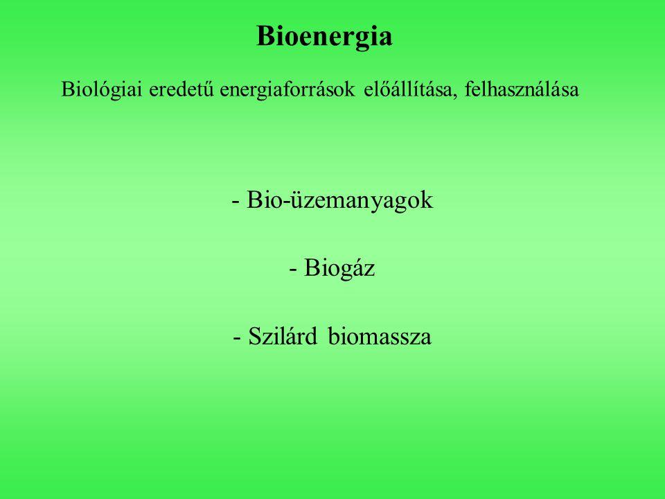 Bioenergia Bio-üzemanyagok Biogáz - Szilárd biomassza