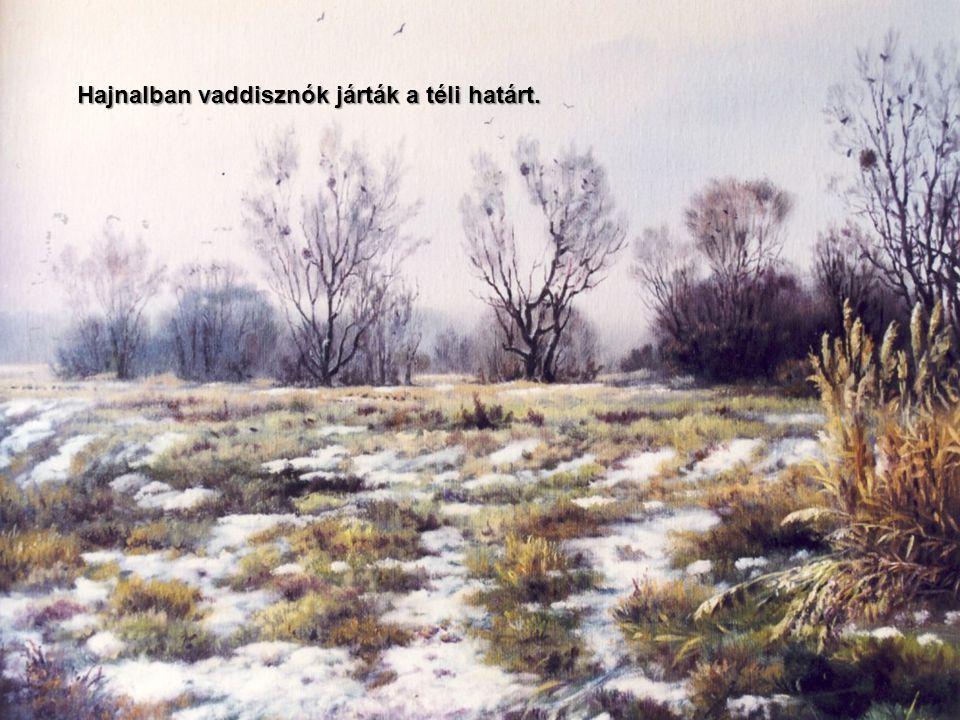 Hajnalban vaddisznók járták a téli határt.