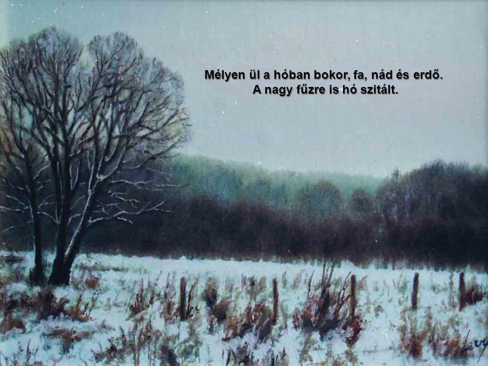 Mélyen ül a hóban bokor, fa, nád és erdő. A nagy fűzre is hó szitált.