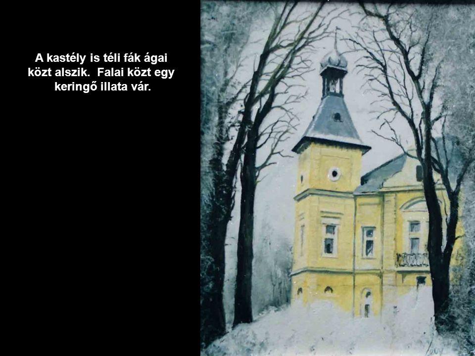 A kastély is téli fák ágai közt alszik. Falai közt egy