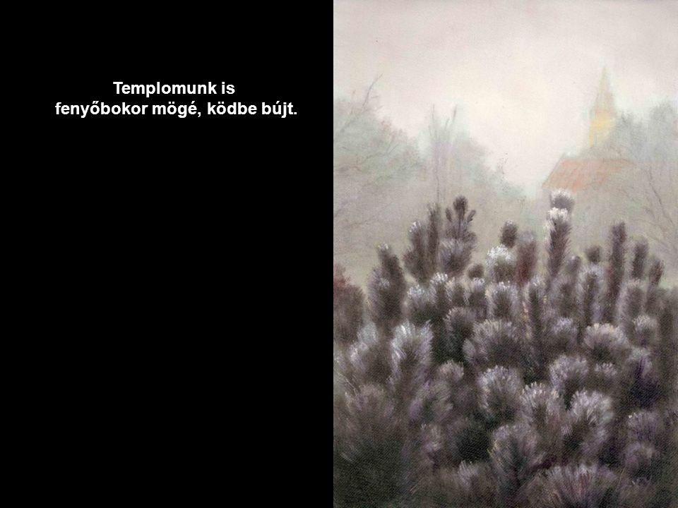 fenyőbokor mögé, ködbe bújt.