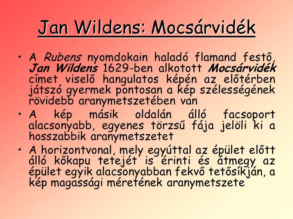 Jan Wildens: Mocsárvidék