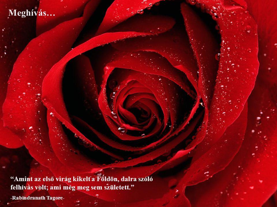 Meghívás… Amint az első virág kikelt a Földön, dalra szóló felhívás volt; ami még meg sem született.