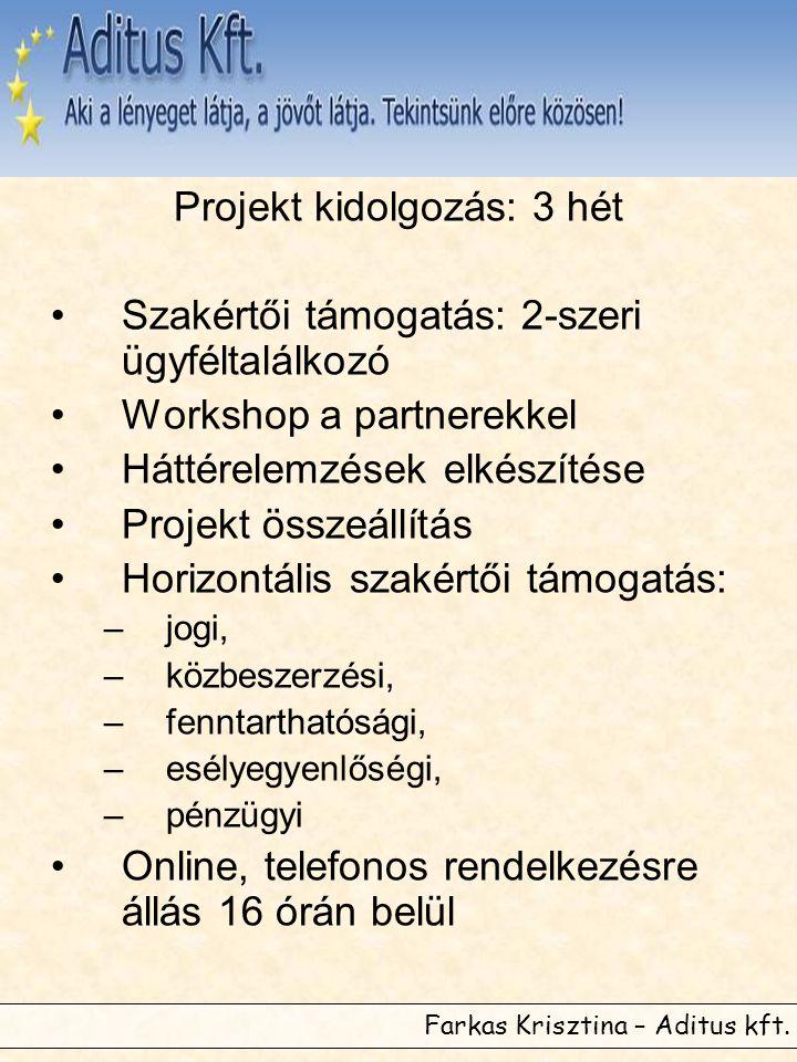 Projekt kidolgozás: 3 hét