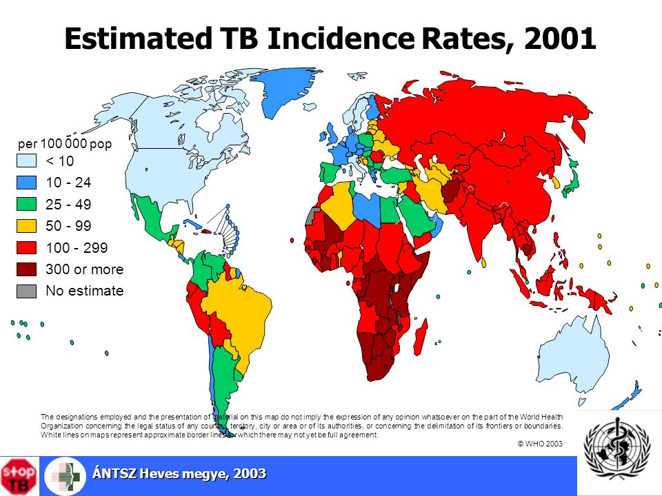 Estimated TB Incidence Rates, 2001