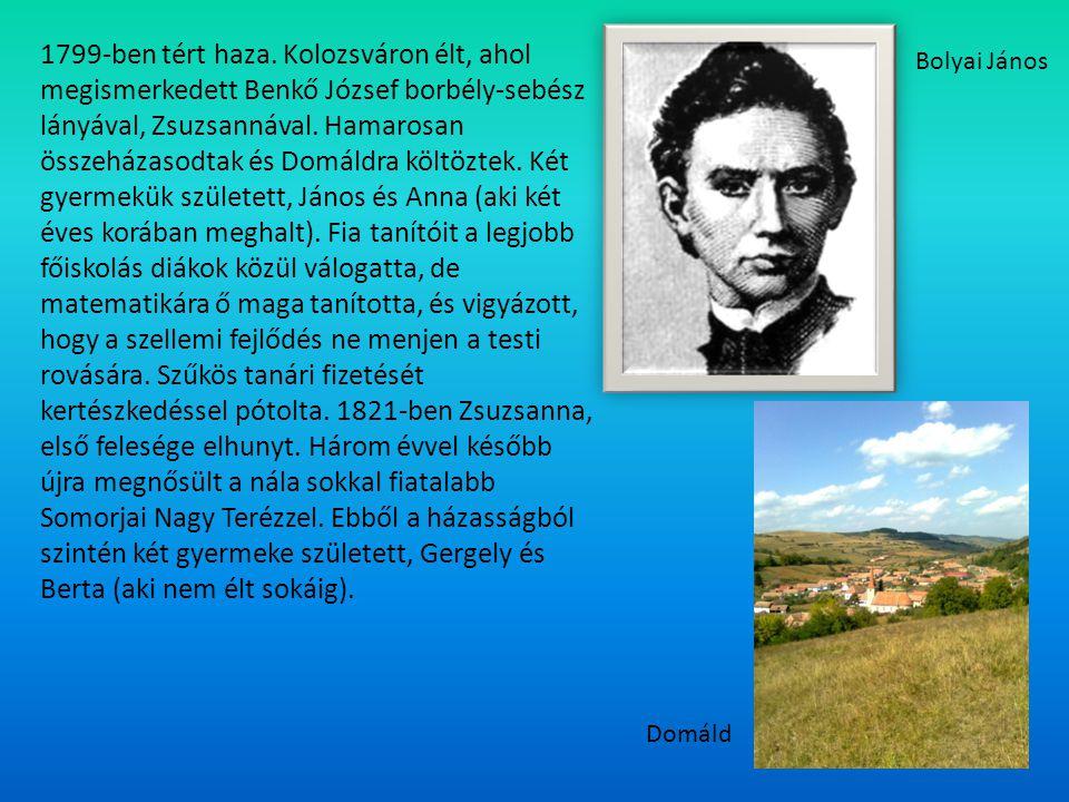1799-ben tért haza. Kolozsváron élt, ahol megismerkedett Benkő József borbély-sebész lányával, Zsuzsannával. Hamarosan összeházasodtak és Domáldra költöztek. Két gyermekük született, János és Anna (aki két éves korában meghalt). Fia tanítóit a legjobb főiskolás diákok közül válogatta, de matematikára ő maga tanította, és vigyázott, hogy a szellemi fejlődés ne menjen a testi rovására. Szűkös tanári fizetését kertészkedéssel pótolta. 1821-ben Zsuzsanna, első felesége elhunyt. Három évvel később újra megnősült a nála sokkal fiatalabb Somorjai Nagy Terézzel. Ebből a házasságból szintén két gyermeke született, Gergely és Berta (aki nem élt sokáig).