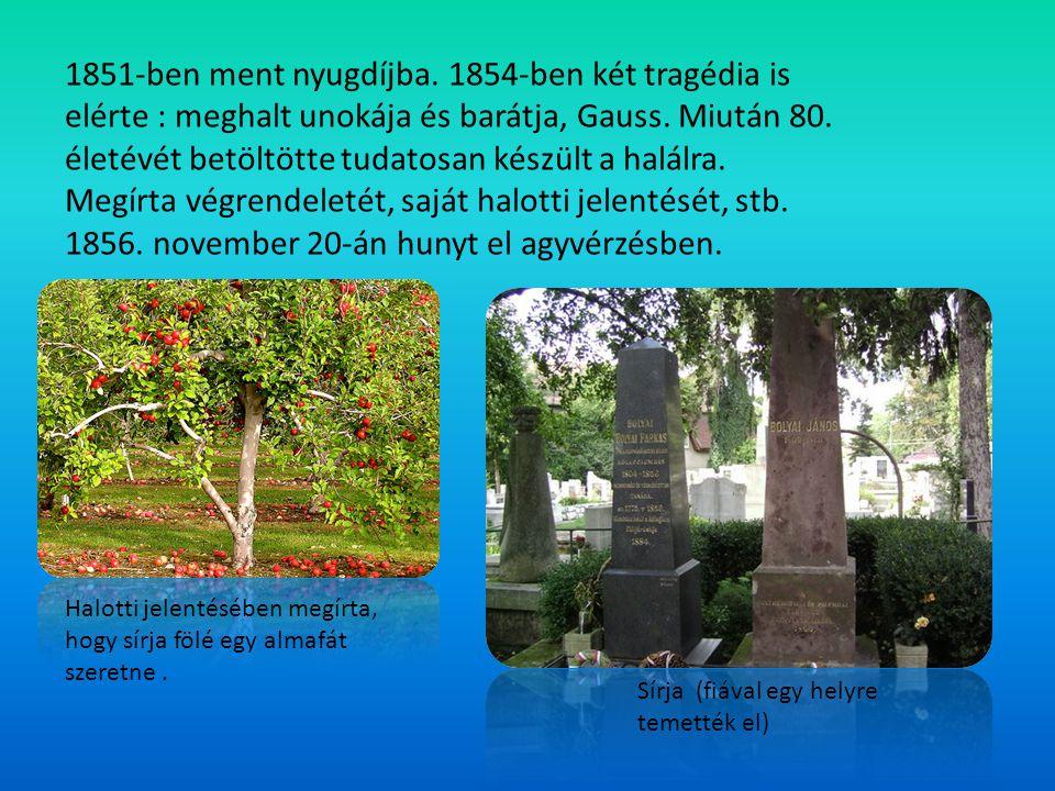 1851-ben ment nyugdíjba. 1854-ben két tragédia is elérte : meghalt unokája és barátja, Gauss. Miután 80. életévét betöltötte tudatosan készült a halálra. Megírta végrendeletét, saját halotti jelentését, stb. 1856. november 20-án hunyt el agyvérzésben.