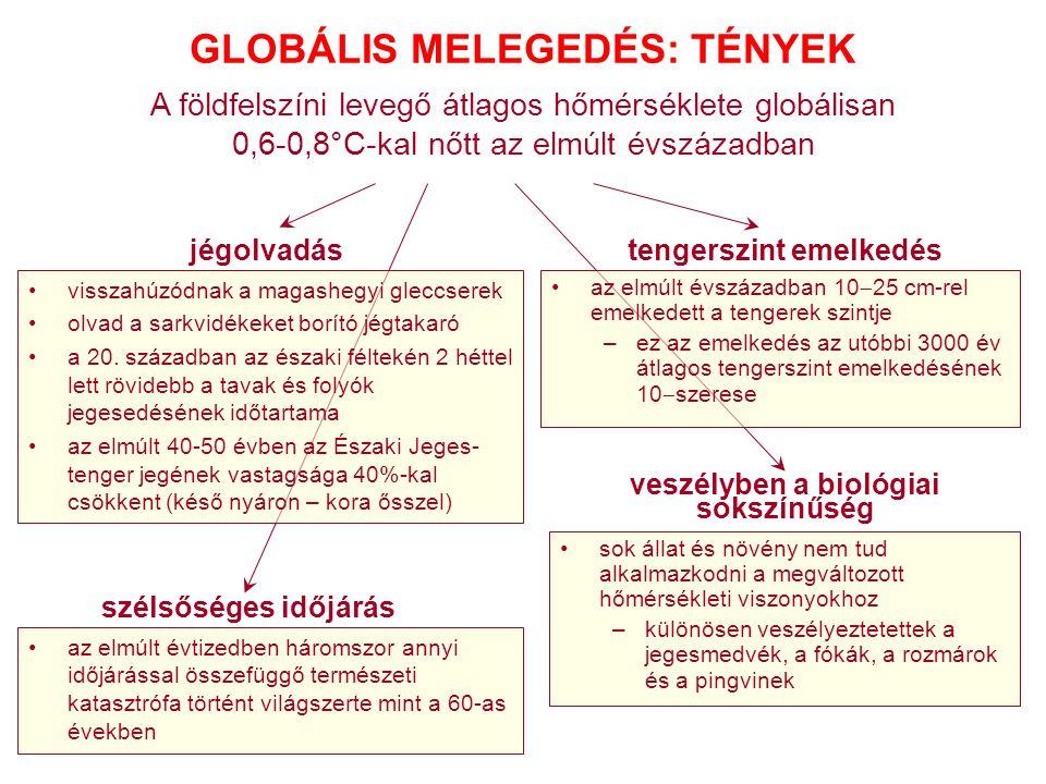 GLOBÁLIS MELEGEDÉS: TÉNYEK