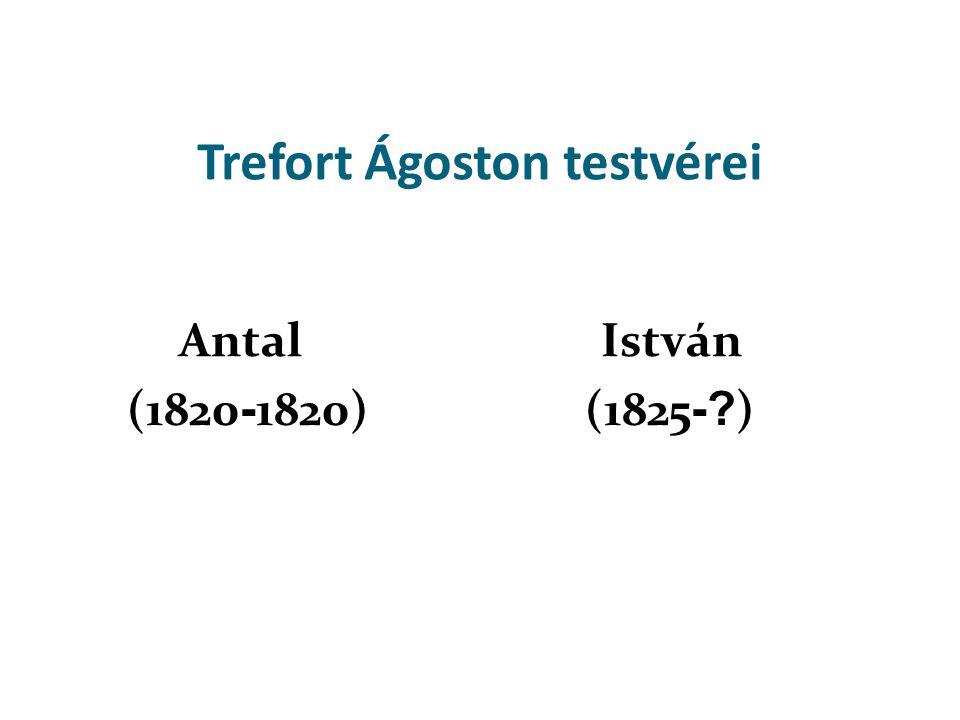Trefort Ágoston testvérei