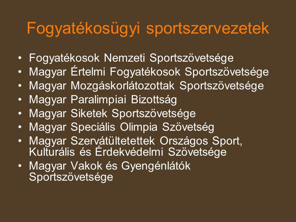 Fogyatékosügyi sportszervezetek