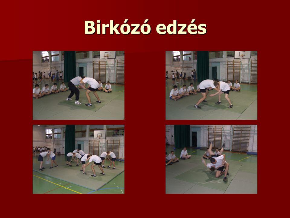 Birkózó edzés