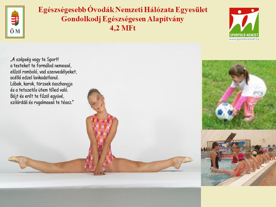 Egészségesebb Óvodák Nemzeti Hálózata Egyesület Gondolkodj Egészségesen Alapítvány 4,2 MFt