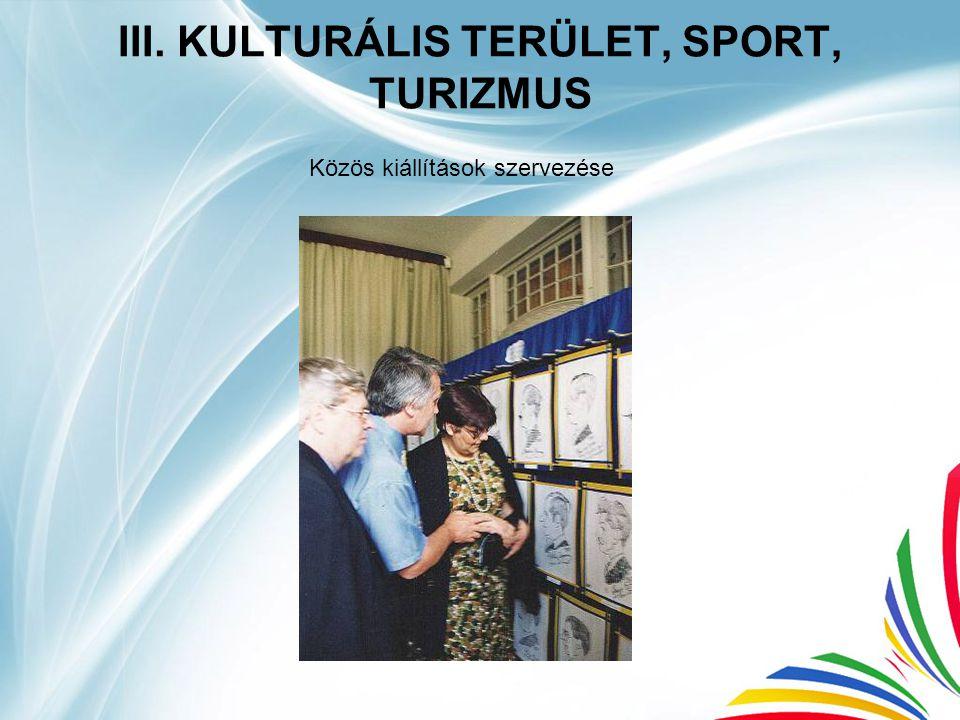 III. KULTURÁLIS TERÜLET, SPORT, TURIZMUS