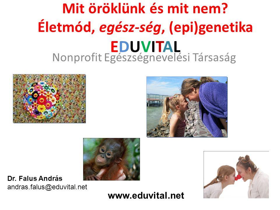 Mit öröklünk és mit nem Életmód, egész-ség, (epi)genetika EDUVITAL