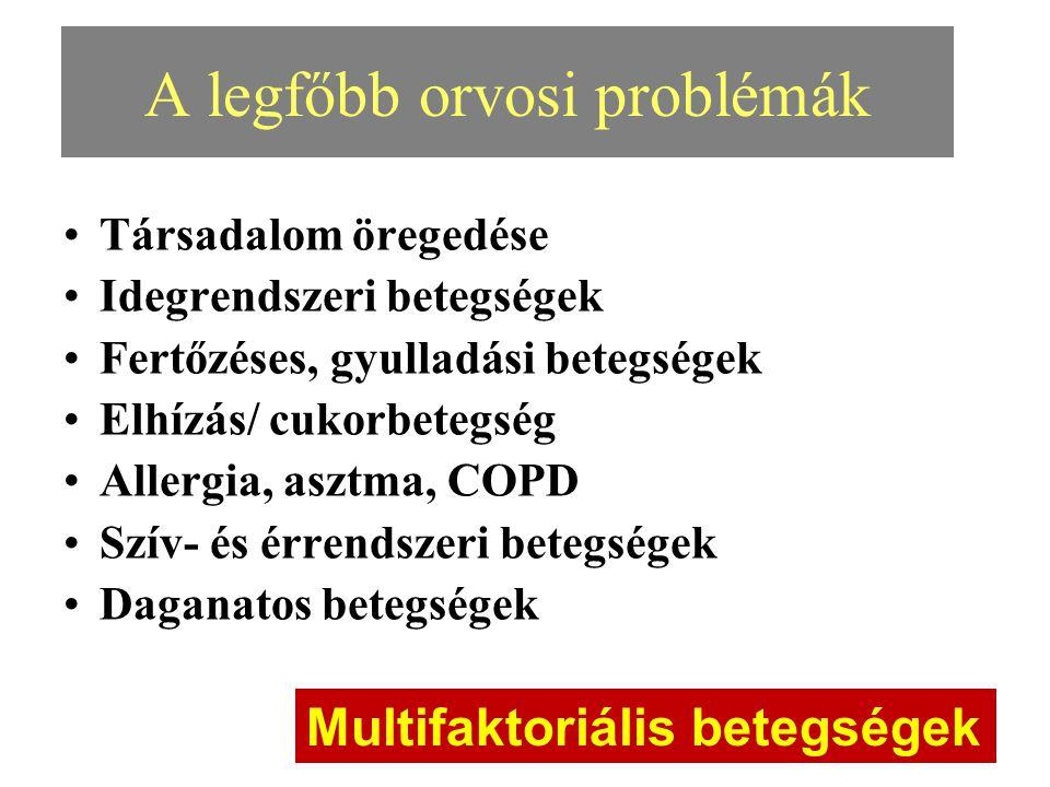 A legfőbb orvosi problémák