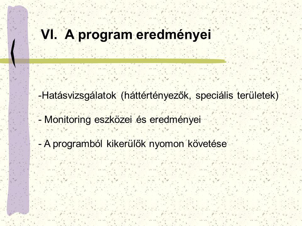 VI. A program eredményei