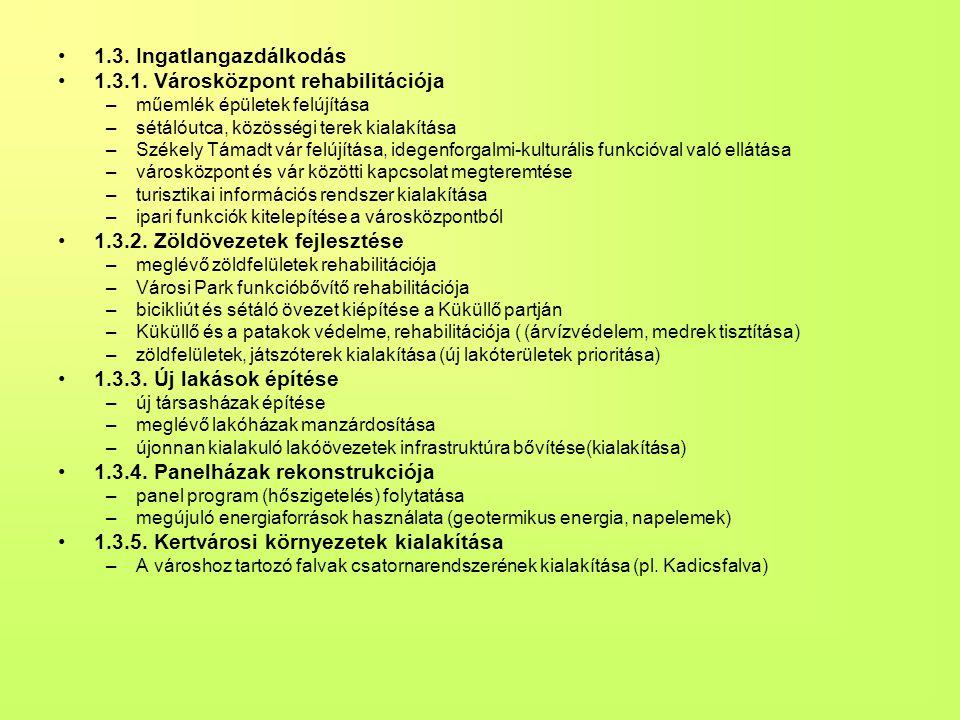 1.3.1. Városközpont rehabilitációja