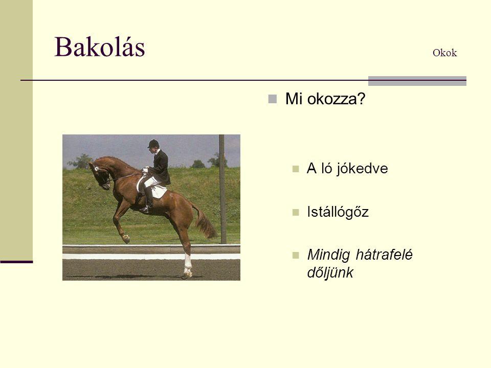 Bakolás Okok Mi okozza A ló jókedve Istállógőz