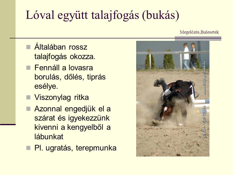 Lóval együtt talajfogás (bukás) Megelőzés,Balesetek