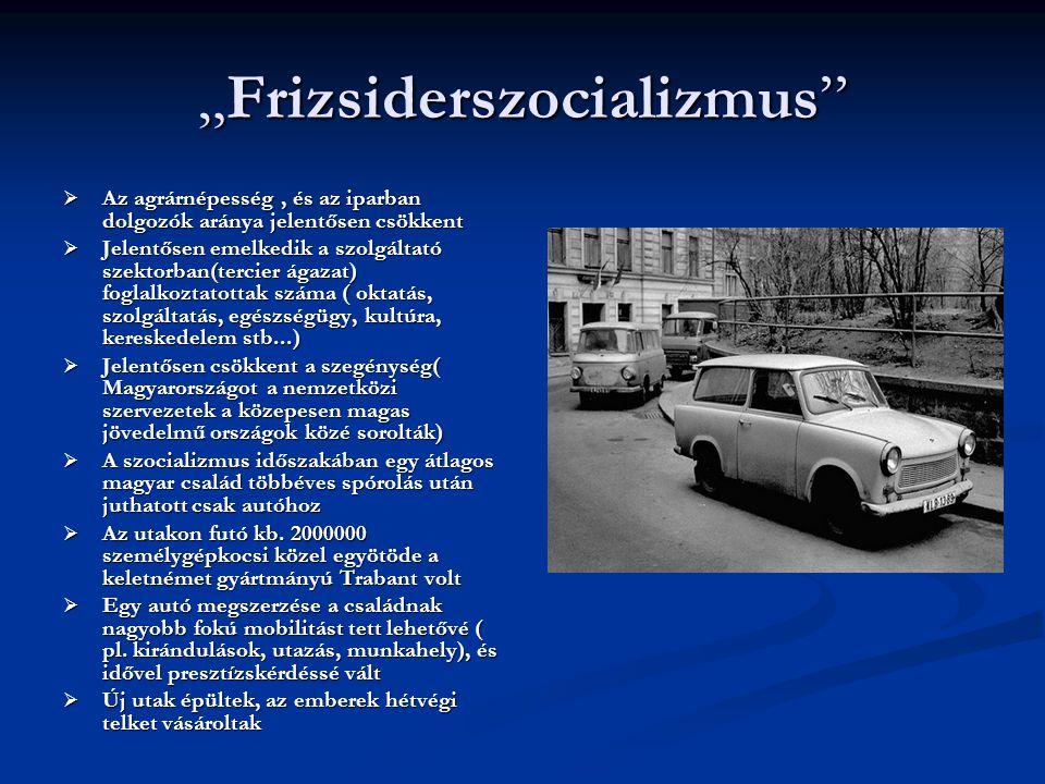"""""""Frizsiderszocializmus"""