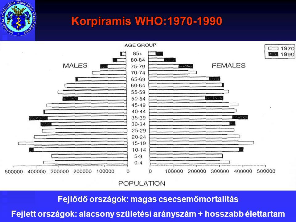 Korpiramis WHO:1970-1990 Fejlődő országok: magas csecsemőmortalitás
