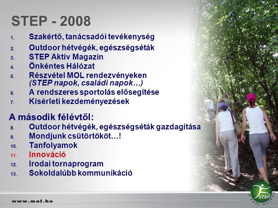 STEP - 2008 A második félévtől: Szakértő, tanácsadói tevékenység