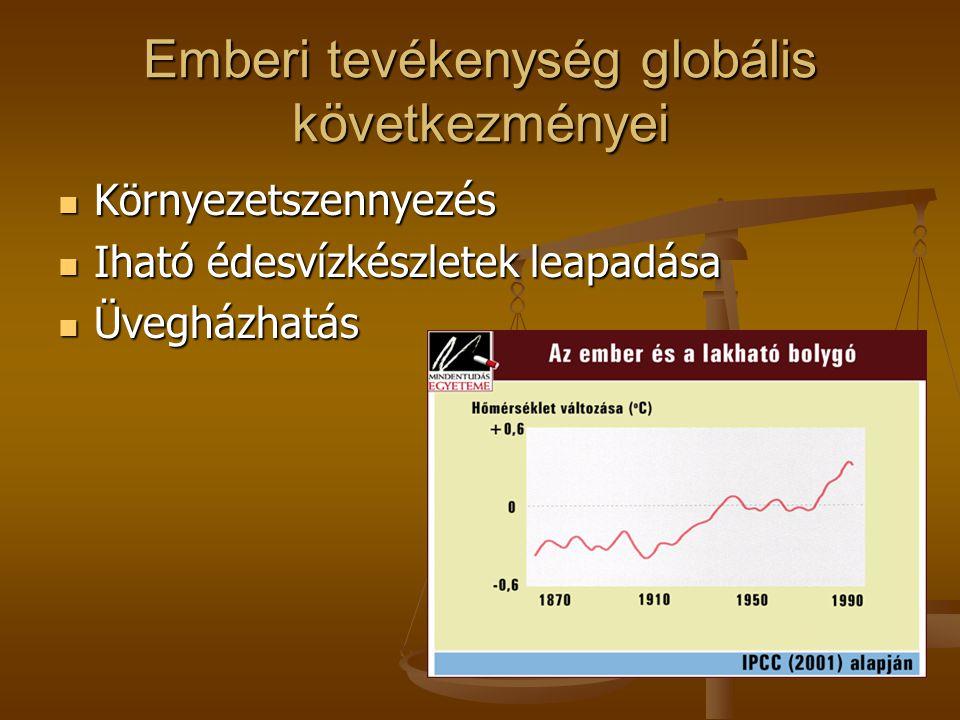 Emberi tevékenység globális következményei