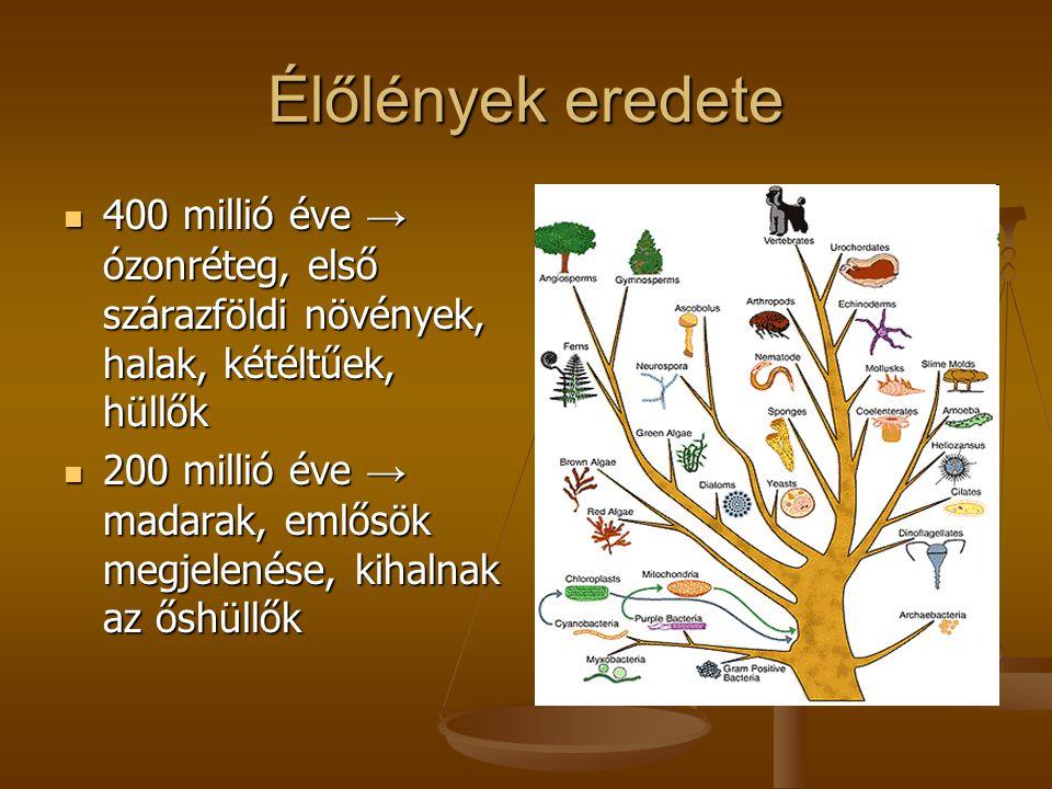 Élőlények eredete 400 millió éve → ózonréteg, első szárazföldi növények, halak, kétéltűek, hüllők.
