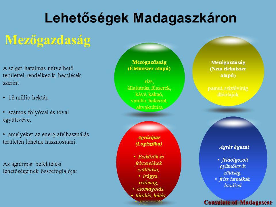 Lehetőségek Madagaszkáron (Nem élelmiszer alapú)