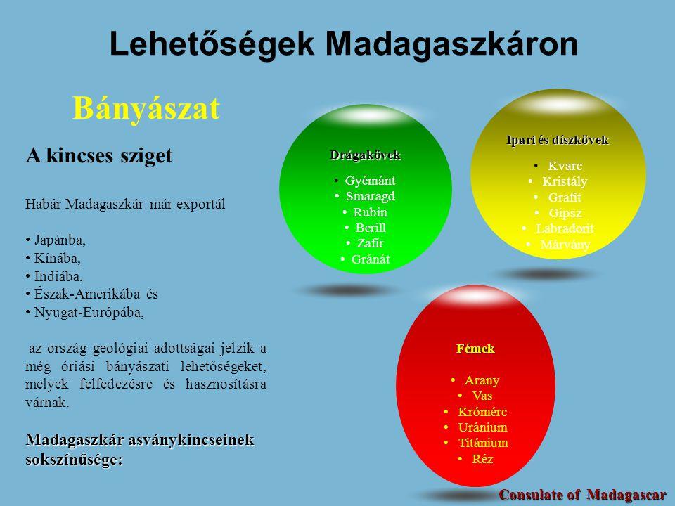 Lehetőségek Madagaszkáron