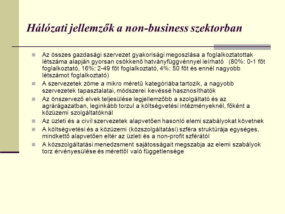Hálózati jellemzők a non-business szektorban
