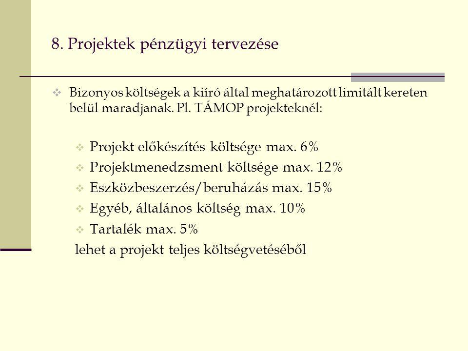 8. Projektek pénzügyi tervezése