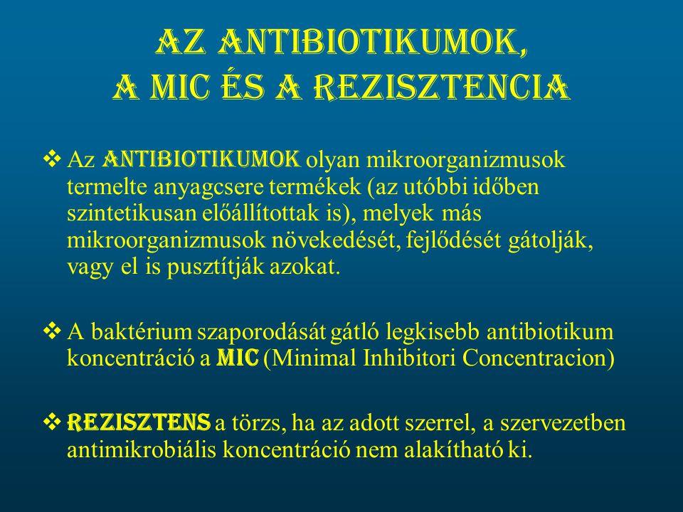Az antibiotikumok, a MIC és a rezisztencia