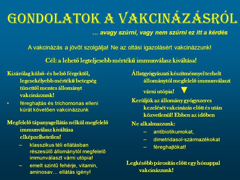 Gondolatok a vakcinázásról