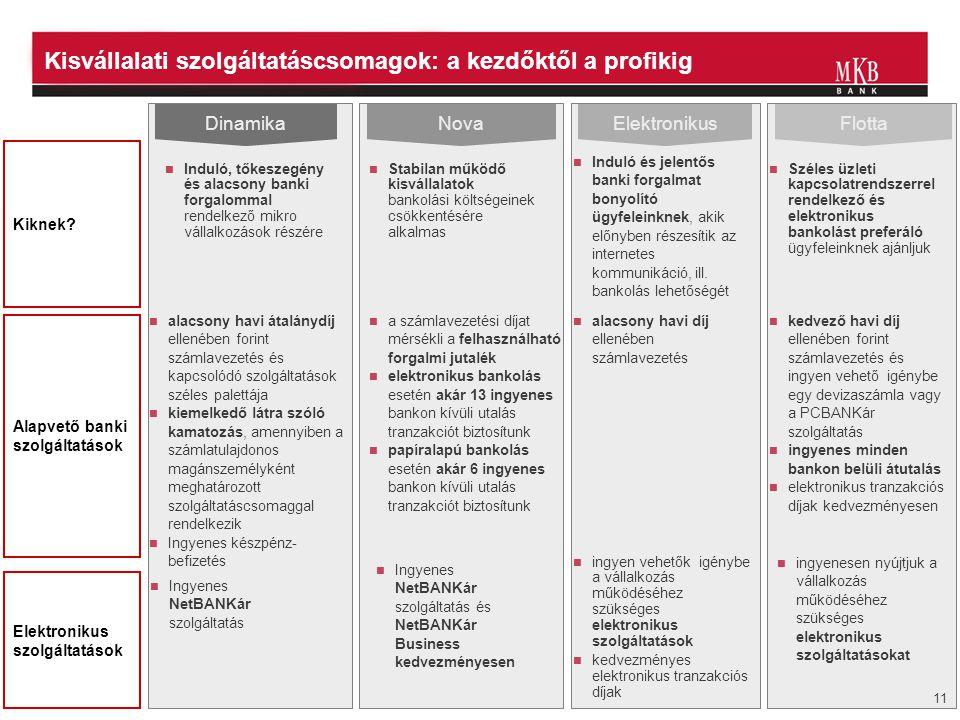 Kisvállalati szolgáltatáscsomagok: a kezdőktől a profikig