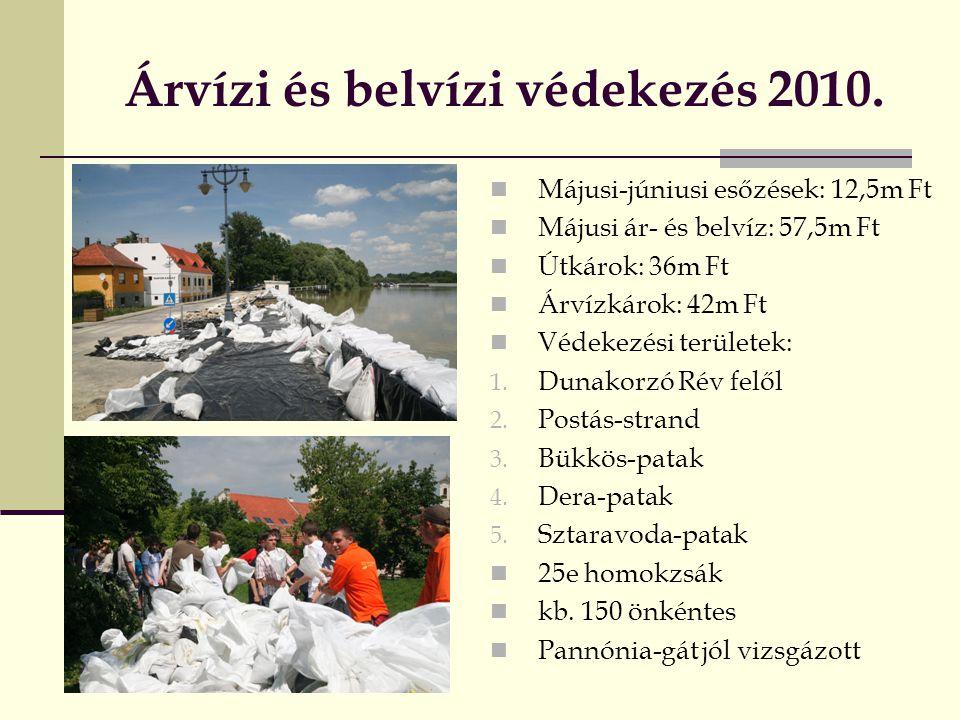 Árvízi és belvízi védekezés 2010.