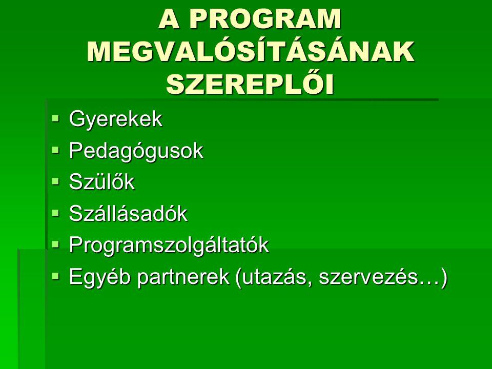 A PROGRAM MEGVALÓSÍTÁSÁNAK SZEREPLŐI