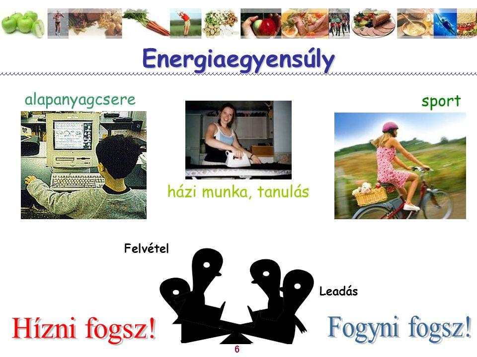 Energiaegyensúly Hízni fogsz! Fogyni fogsz! alapanyagcsere sport