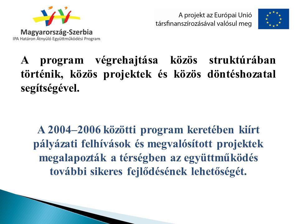 A program végrehajtása közös struktúrában történik, közös projektek és közös döntéshozatal segítségével.