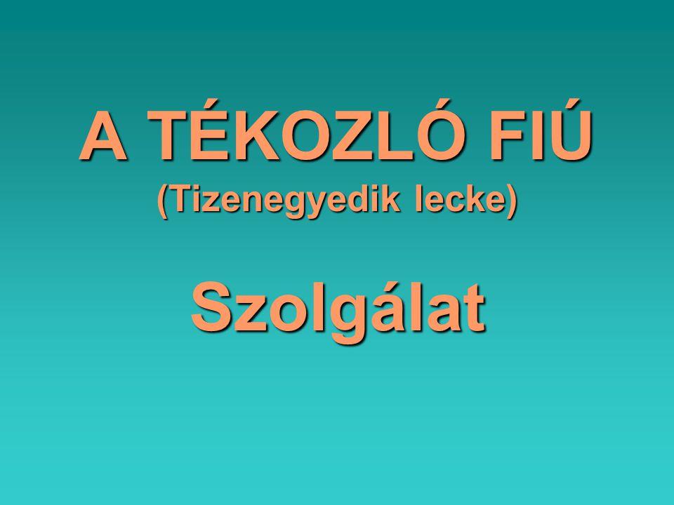 A TÉKOZLÓ FIÚ (Tizenegyedik lecke) Szolgálat