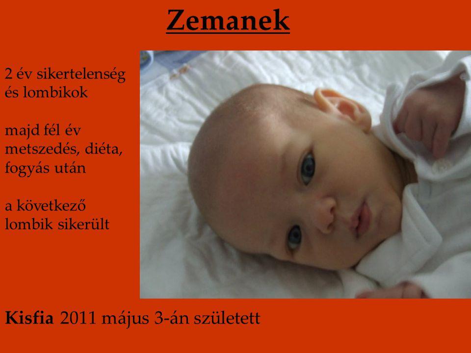 Zemanek Kisfia 2011 május 3-án született