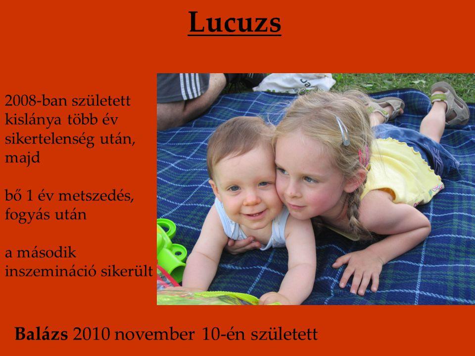 Lucuzs Balázs 2010 november 10-én született