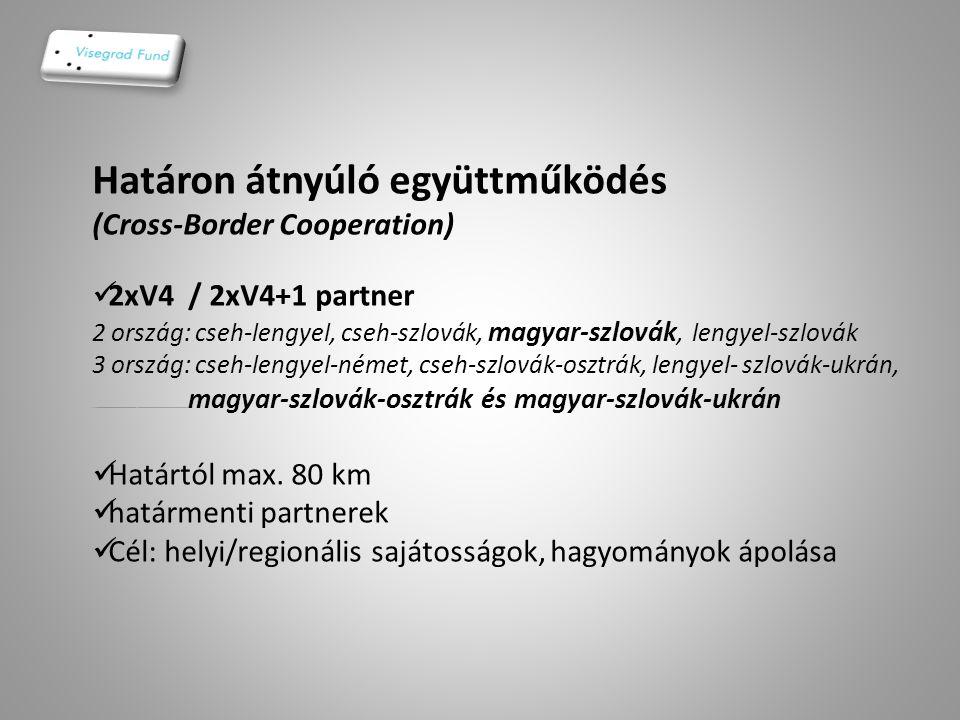 Határon átnyúló együttműködés