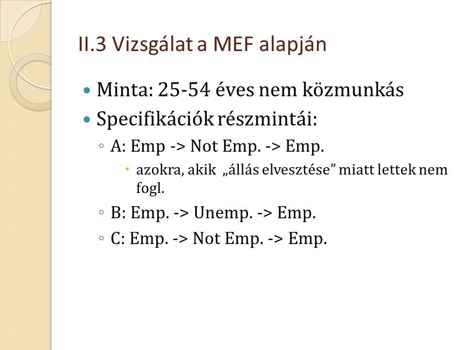 II.3 Vizsgálat a MEF alapján