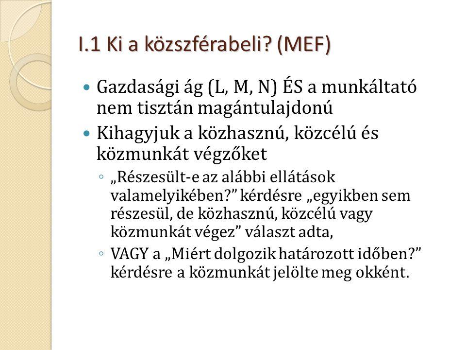 I.1 Ki a közszférabeli (MEF)